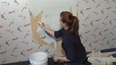 remove-wallpaper-drywall-800x800